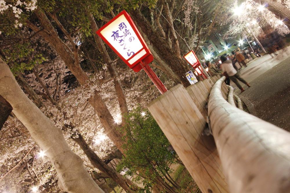 岡崎の桜まつり1