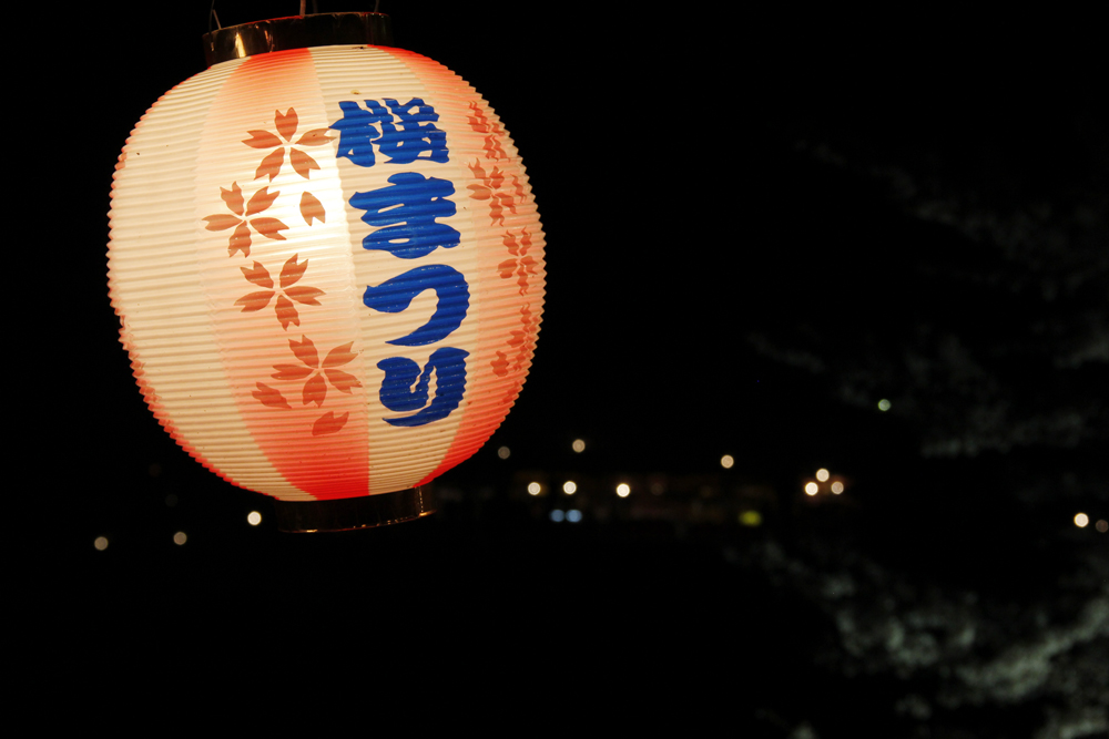岡崎の桜まつり6