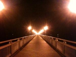 竹島 蒲郡 散歩 夜風